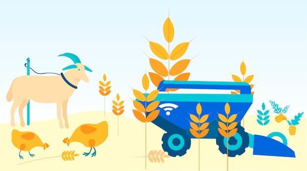 Animals on field. harvesting machine cleans field. Premium Vector