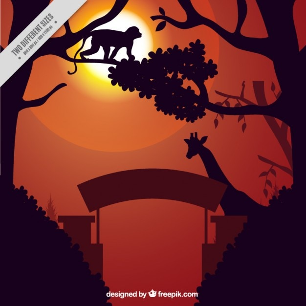 Animals silhouettes in the zoo Free Vector