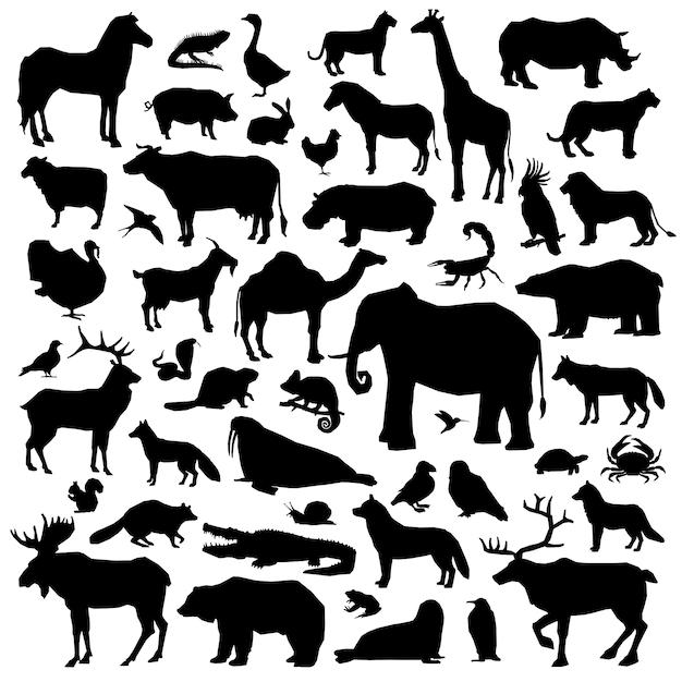 동물 suilhouette 큰 세트 무료 벡터
