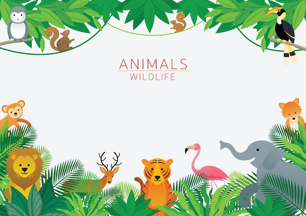 Animals and wilelife in jungle illustration Premium Vector
