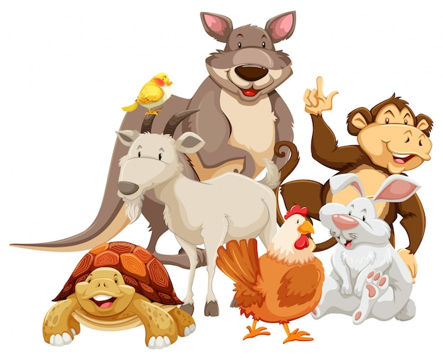 Animals Free Vector