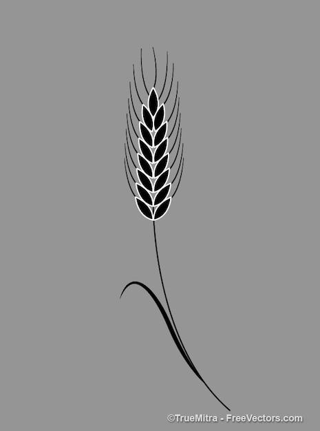 Antique laurel leaf illustration Free Vector