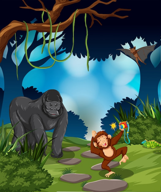 Ape in the rainforest Free Vector