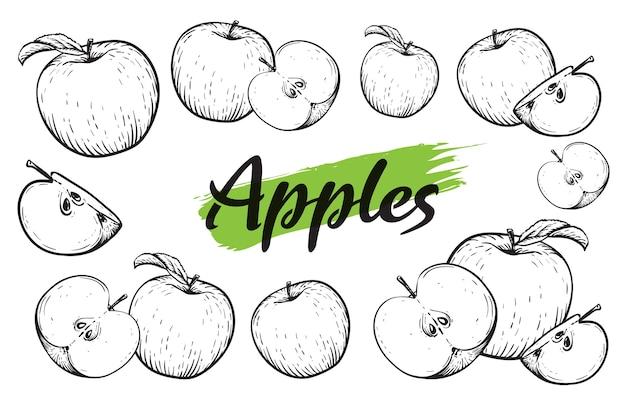 アップルフルーツセット。刻まれた黒と白のリンゴ。ビンテージ。手リアルな描画。 Premiumベクター