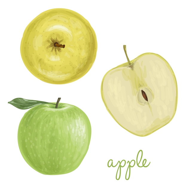 Apple painted with watercolors Free Vector