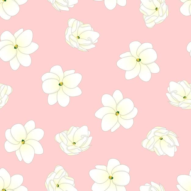 Arabian jasmine on light pink background Premium Vector