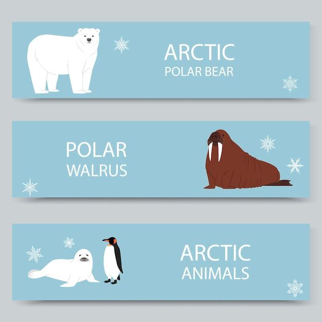 Arctic animals and north pole cartoon banners set Premium Vector