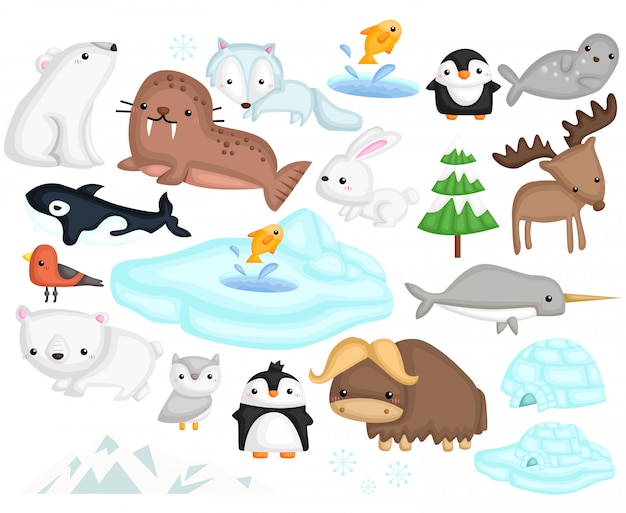 Arctic animals Premium Vector