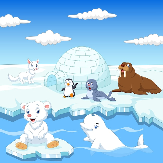 Arctics animals collection set with igloo ice house Premium Vector