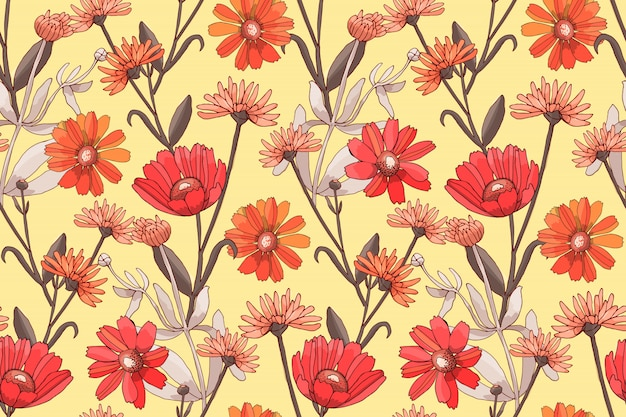 Art floral vector seamless pattern with red and orange flowers. Premium Vector