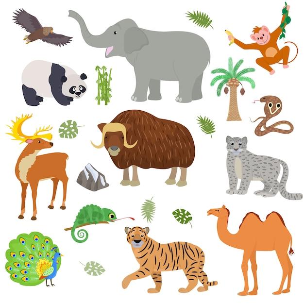 Азиатские животные анималистические дикий характер тигр верблюд панда в азии дикой природы иллюстрации набор млекопитающих буйволов слон кобра, изолированных на белом фоне Premium векторы