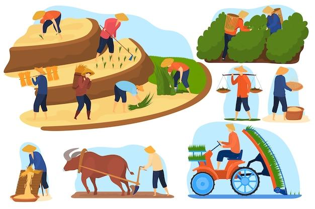 아시아 농장 쌀 필드 벡터 일러스트 레이 션 세트, 만화 평면 농부 사람들이 계단식 농업 쌀 농장에서 작동 프리미엄 벡터