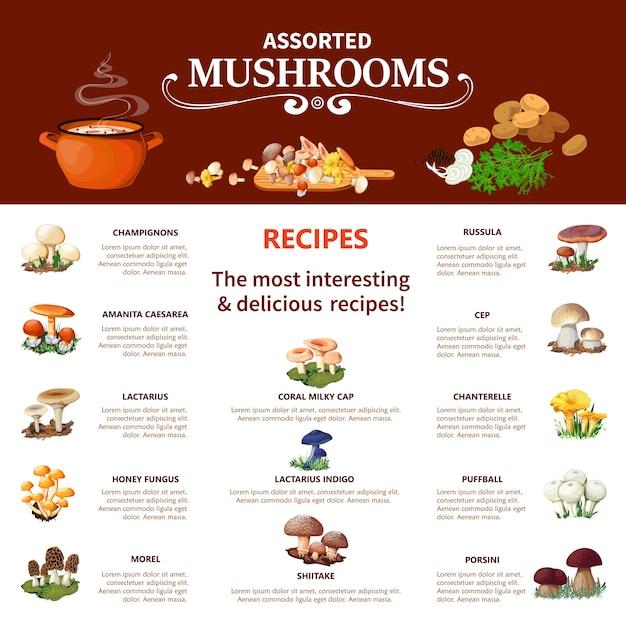 Assorted  mushrooms infographics Free Vector