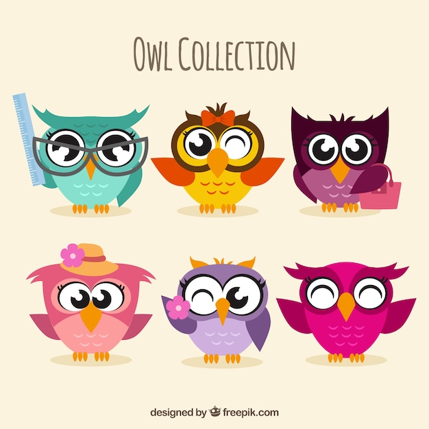 Assortment of colorful owls in flat design Free Vector