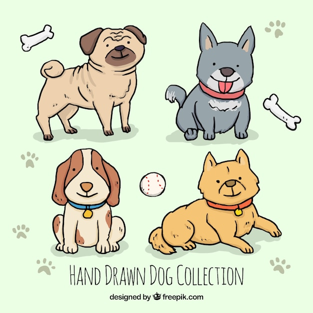 Assortment of four hand-drawn dogs