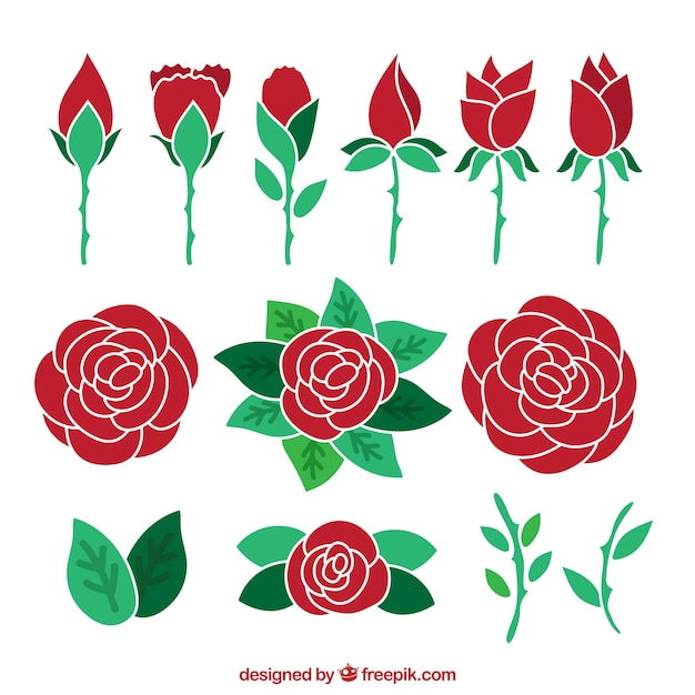 Assortment of hand-drawn red roses