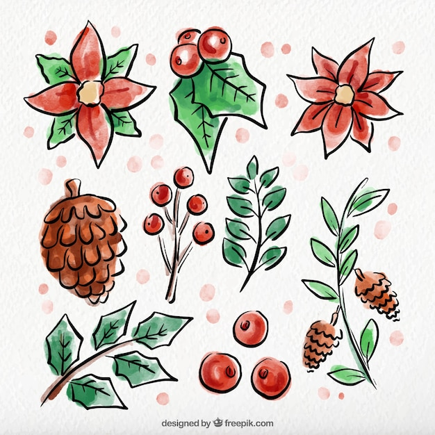 Assortment of hand-drawn watercolor winter\ flowers