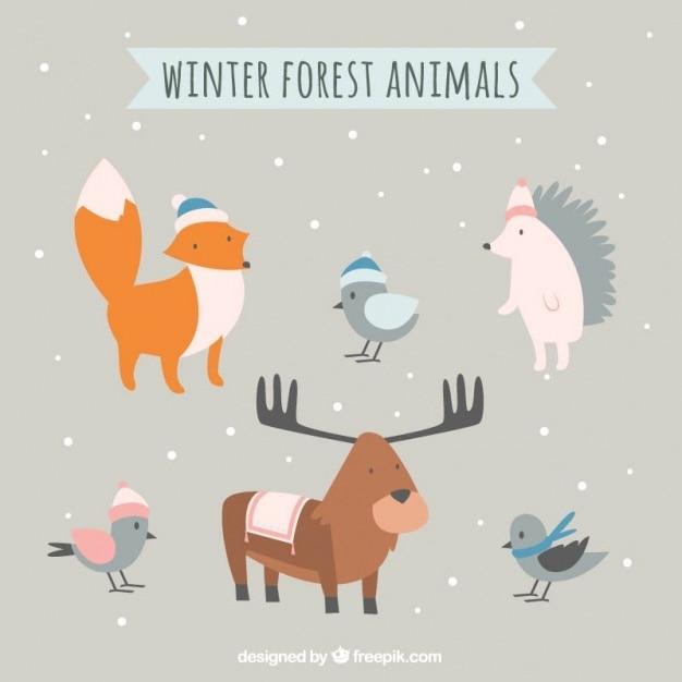 Assortment of lovely winter animals