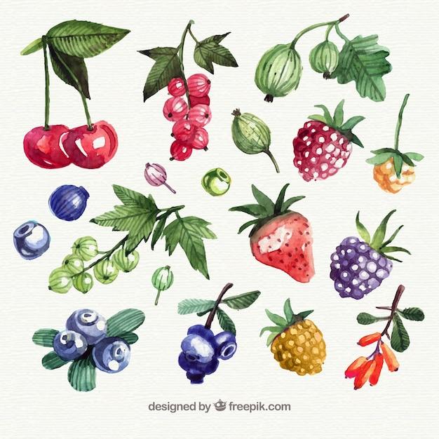 Ассортимент фруктовых кусочков фруктов Бесплатные векторы