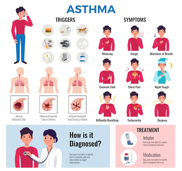 Asthma chronic disease flat infographic elements collection with triggers symptoms causes diagnosis medication and treatment Free Vector