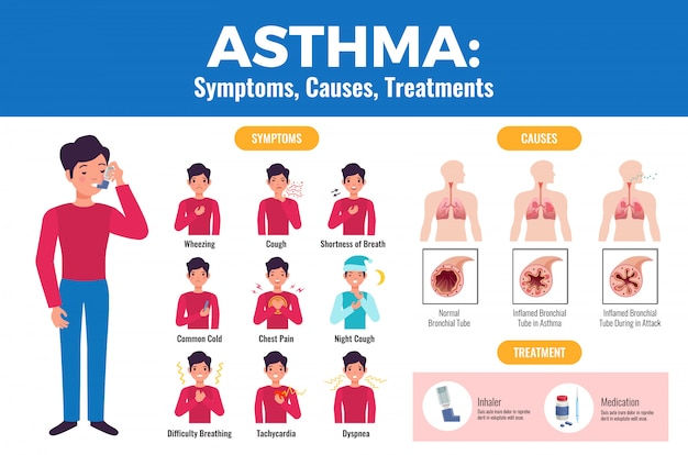 Asthma symptoms causes treatment flat medical  with patient holding inhaler and inflamed bronchial tube Free Vector