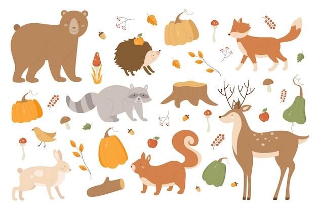秋の動物イラストセット。漫画の森秋シーズンアライグマクマ鹿うさぎハリネズミキツネ文字、木の枝、秋のキノコ、白のカボチャのシーズンコレクション Premiumベクター