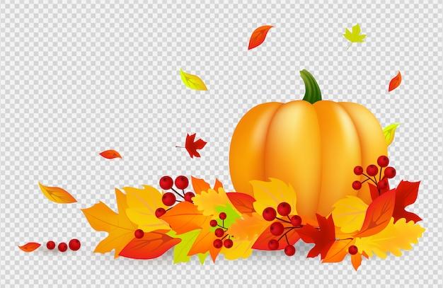 秋の背景。透明な背景にカボチャゴールドの赤い葉を持つ感謝祭バナー。落ち葉、収穫 Premiumベクター
