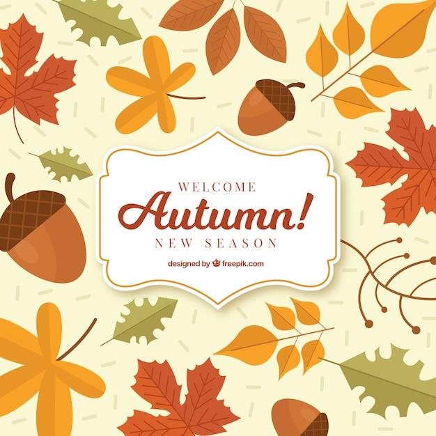 Осенний фон с классическим стилем Premium векторы