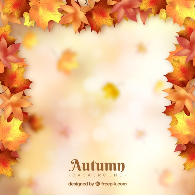Autumn background with colorful leaves Free Vector