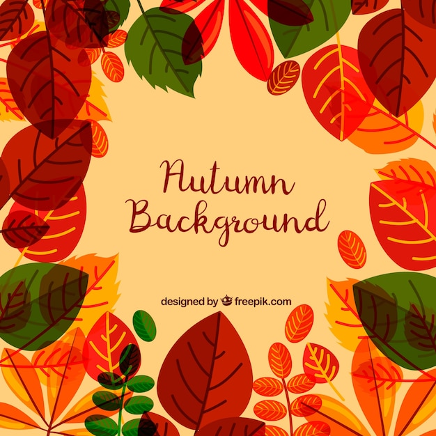Autumn background with flat leaves