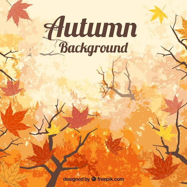 Autumn background with leaves and brances
