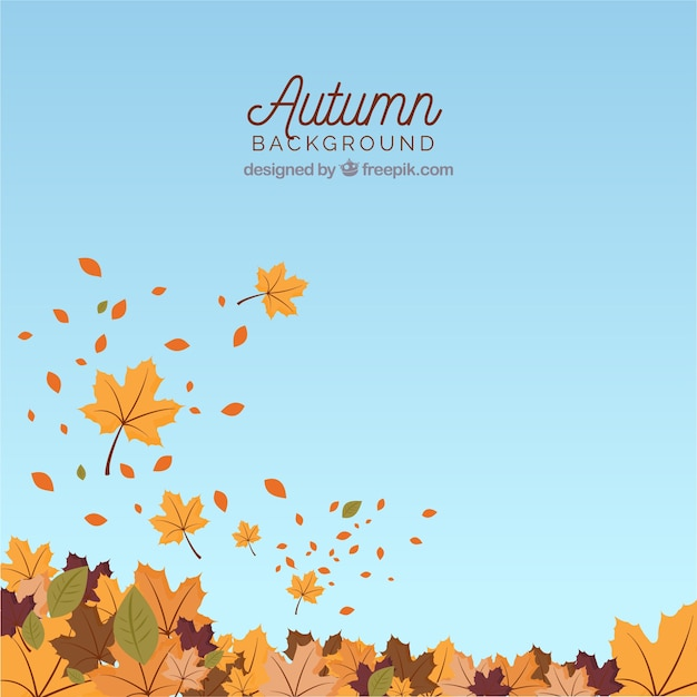 Autumn background with leaves and sky