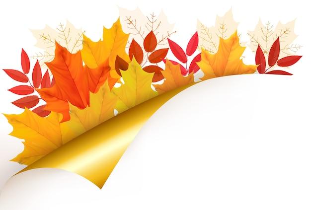 葉と秋の背景。学校に戻る。図。 Premiumベクター