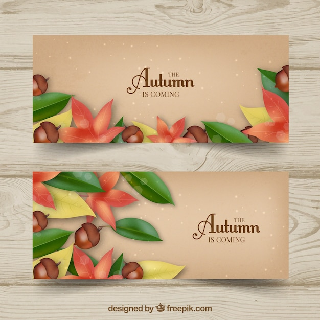Autumn banners with realistic leaves, flowers and acorns