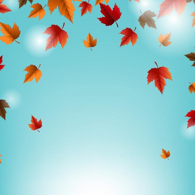 葉と青い背景の秋のカード Premiumベクター