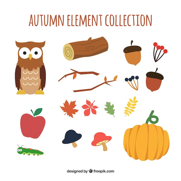 Autumn collection of colourful elements Free Vector