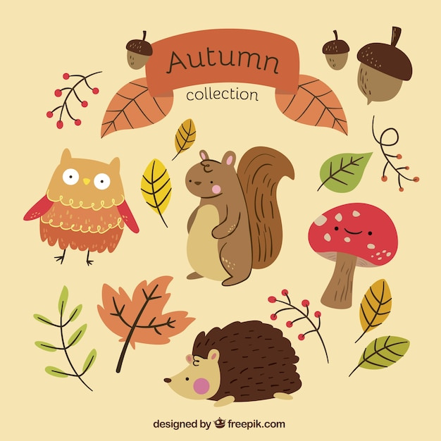 Autumn collection with hand-drawn animals Free Vector