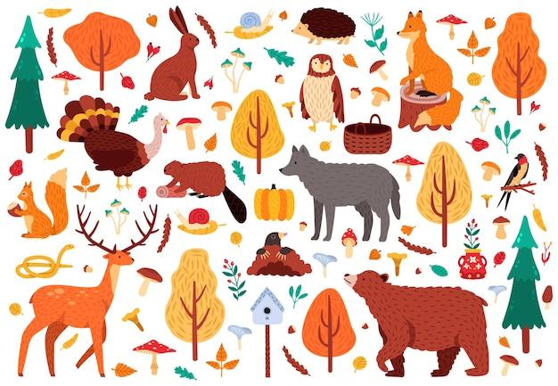 秋のかわいい動物。野生の手描きクマアライグマフォックスと鹿のキャラクター、森の鳥や動物のイラストアイコンセット。森の鳥とクマ、秋の鹿と森のキツネ Premiumベクター