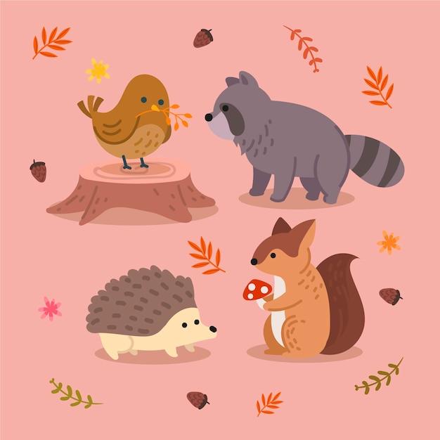 Осенняя лесная коллекция животных Бесплатные векторы