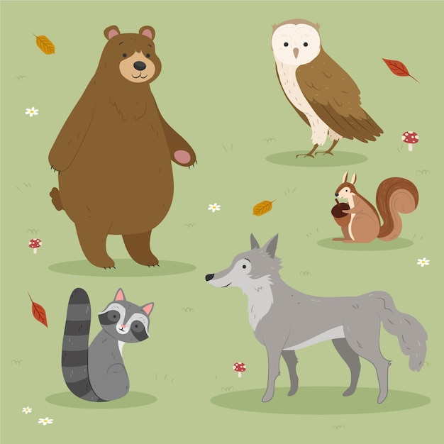 Autumn forest animals drawing design Free Vector