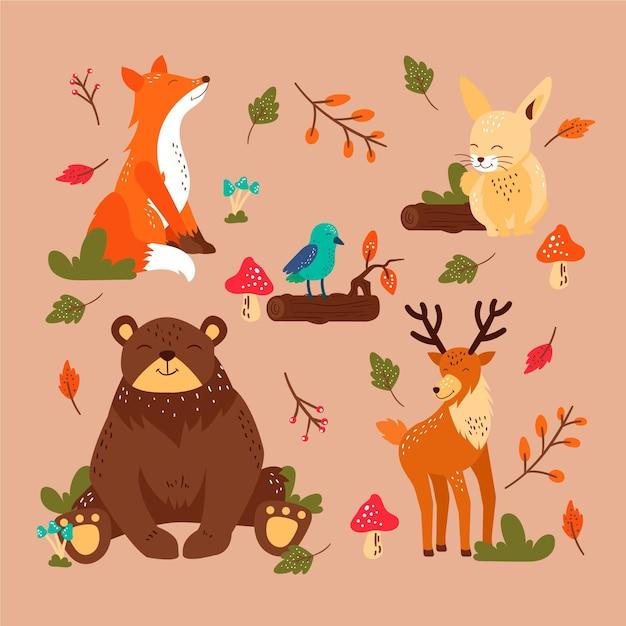 Autumn forest animals set Premium Vector