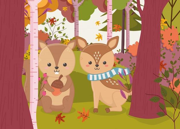 Autumn illustration of cute deer and squirrel with acorn Premium Vector