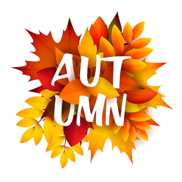 Autumn leaflet with bunch of leaves Free Vector