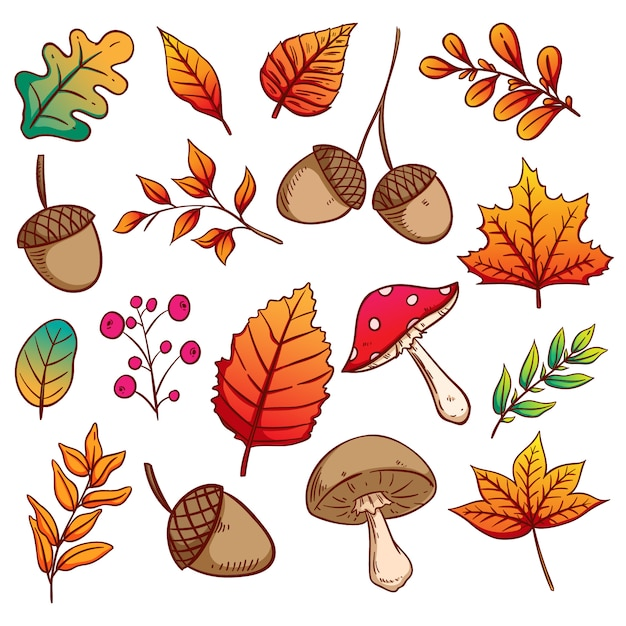 Autumn leaves, acorns and mushrooms set with colorful hand drawn style Premium Vector