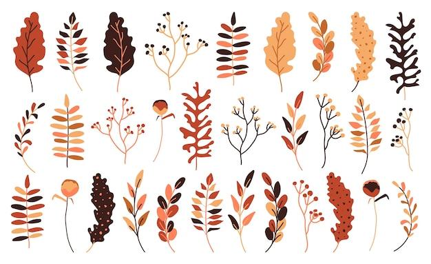 Осенние листья и ягоды плоский набор. ручной обращается абстрактный стиль для декоративной сезонной композиции для приглашения. желтый, оранжевый и красный осенний лист. Premium векторы