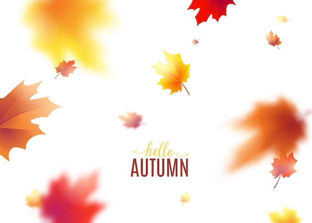 Autumn leaves background with blur effect. Free Vector