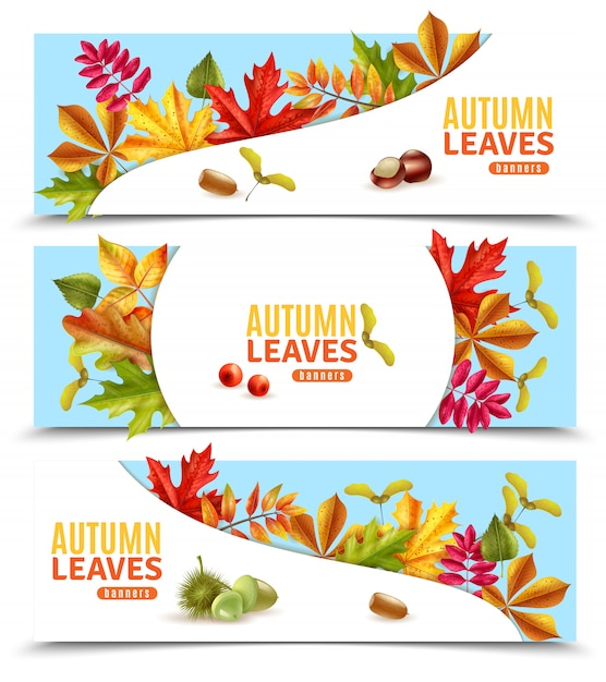 Autumn leaves banners Free Vector