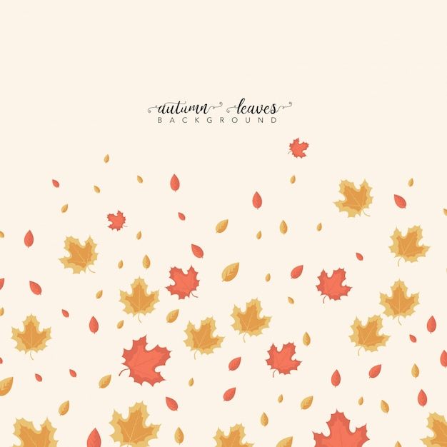Autumn Leaves Beautiful Background
