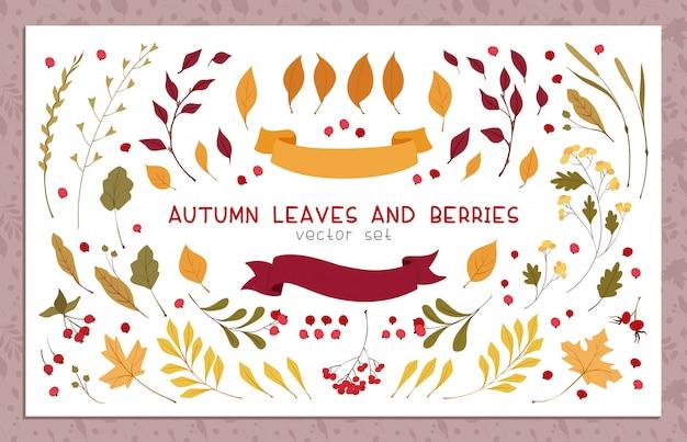 Autumn leaves and berries flat vector illustrations set Premium Vector