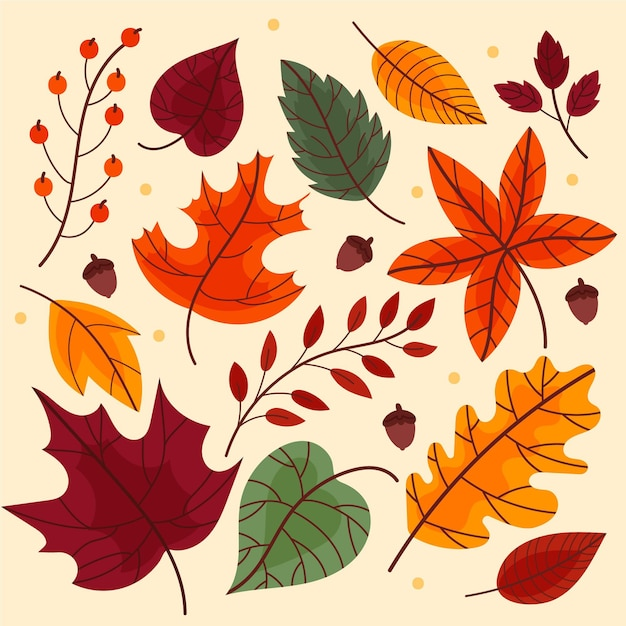 Autumn leaves collection design Free Vector